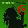 Couverture de l'album Arabadub