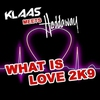 Cover of the track What is Love 2k9