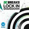 Cover of the album Lock In / Shakedown - Single