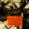 Couverture de l'album The King of the Slide Guitar
