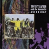 Cover of the album Tommy James & The Shondells: Anthology