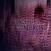 Couverture de l'album Sonderling - Single