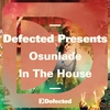 Couverture de l'album Defected Presents Osunlade In the House