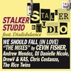Couverture de l'album We Should Fall (In Love) [feat. Disdishdance] {'09 Remixes}