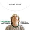 Couverture de l'album Greenberg (Original Motion Picture Soundtrack)