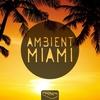 Cover of the album Ambient Miami