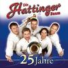 Cover of the album 25 Jahre