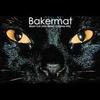 Couverture du titre Black Cat John Brown