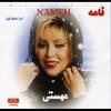Couverture de l'album Nameh (Persian Music) - EP