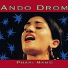 Couverture de l'album Phari Mamo