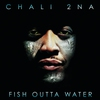 Cover of the album Fish Outta Water