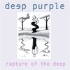 Cover of the track Rapture of the Deep