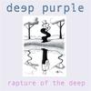 Couverture de l'album Rapture of the Deep