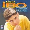 Cover of the track Yaşarken Öldüm