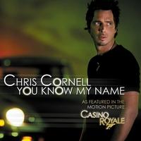 Couverture du titre You Know My Name - Single