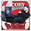 Couverture de l'album The No-Hit Wonder