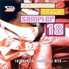 Couverture de l'album Sampler 18