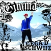 Cover of the album I gega d'Schwiiz