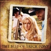 Cover of the album The Best of Trick Pony