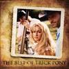Couverture de l'album The Best of Trick Pony