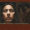 Couverture de l'album Indians Indians