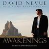 Couverture de l'album Awakenings: The Best of David Nevue (2001-2010)