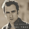 Cover of the album The Opal Tree