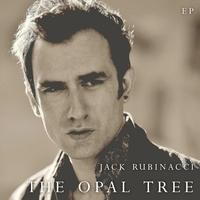 Couverture du titre The Opal Tree