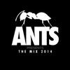 Couverture de l'album Ants Presents The Mix 2014