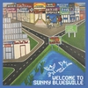 Cover of the album Welcome to Sunny Bluesville