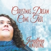 Couverture de l'album Christmas Dream Come True - Single