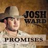 Couverture de l'album Promises