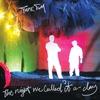 Couverture de l'album The Night We Called It a Day