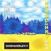 Cover of the album Shoemakerlevi 9