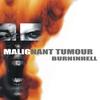 Cover of the album Burninhell