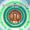 Couverture de l'album Buddha Groove 2