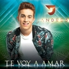 Cover of the album Te Voy a Amar - Single