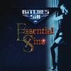 Cover of the album Essential Sins