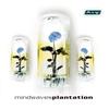 Cover of the album Plantation