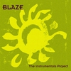 Couverture de l'album The Instrumentals Project