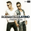 Couverture de l'album Princesa (Radio Edit) - Single