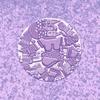Cover of the album Elysia Crampton Presents: Demon City