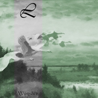 Cover of the track Wonder