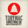 Couverture de l'album Christmas in Diverse City