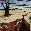Cover of the album Fortunate Observer of Time