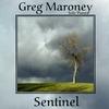 Cover of the album Sentinel