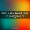 Couverture de l'album Calm Tunes, Vol. 08