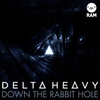 Cover of the album Down the Rabbit Hole