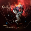 Cover of the album Tribulation