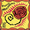 Cover of the track Macarena
